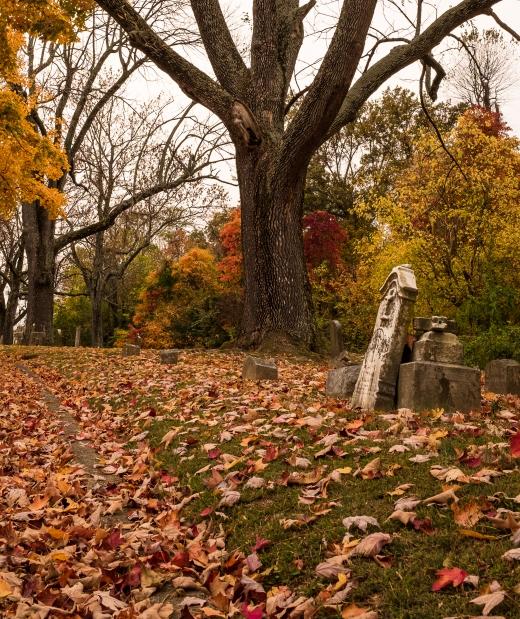 alexander cemetery-4593