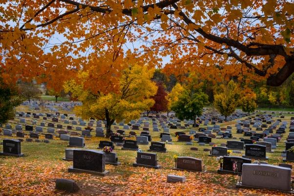 alexander cemetery-4628